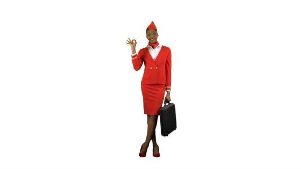 Thumbnail for Stewardess Shows Okey. Alpha Channel