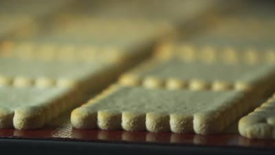 Golden Gingerbread Cookies are Baking in the Oven Close Up