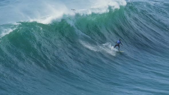 Thumbnail for Man Holds Balance on Surfboard and Disappears Under Wave