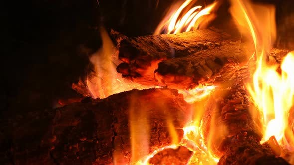Burning Fire in Fireplace with Wood Firewood
