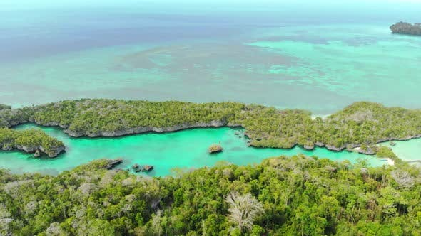 Cover Image for Aerial: flying over tropical sea pristine coastline rainforest turquoise lagoon, Indonesia Maluku