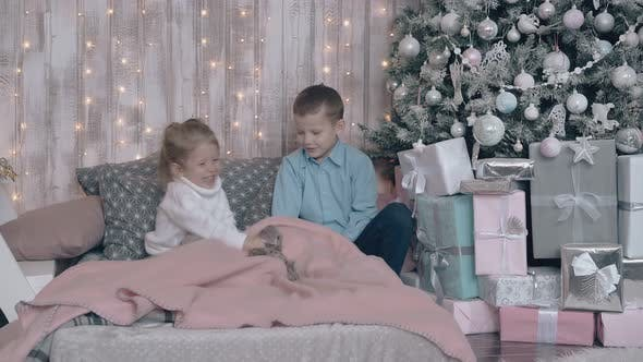 Adorable Siblings Play Hide and Seek with Toys on Cozy Bed