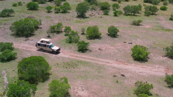 Thumbnail for Safari Tour in the Wild