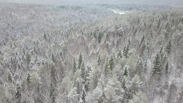 Thumbnail for AERIAL: Flying Over the Snowy Forest and Hills