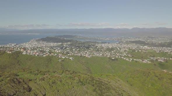 Thumbnail for Wellington cityscape