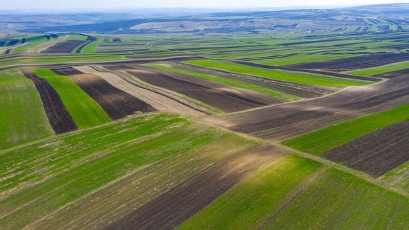 Thumbnail for Flying Above Agricultural Plowed Fields