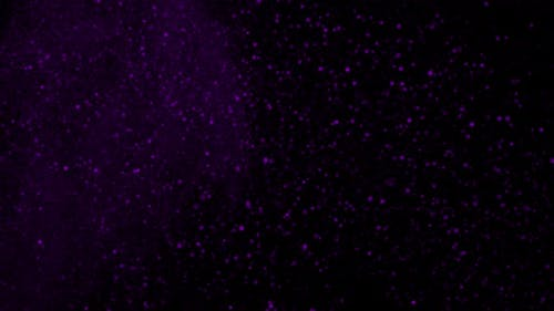 Purple Glittering Atmospheric Particle Background on Black