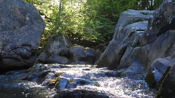 Thumbnail for Water Rushing Down Stream Beside Large Rocks Beside Green Forest