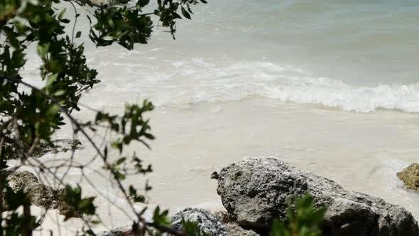 Thumbnail for Beach 010