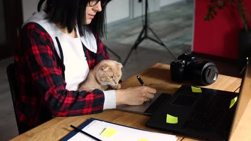 Creative Female Photographer with Cute Cat Using Graphic Drawing Tablet and Stylus Pen