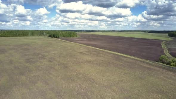 Thumbnail for Bird Eye View Boundless Fields Against Forest Under Nice Sky
