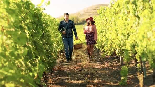 Thumbnail for Beautiful Caucasian Couple with Glasses of Wine in Hands
