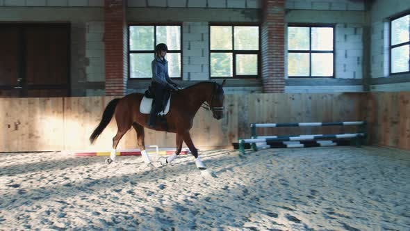 Thumbnail for Woman on Horse Walking Slowly on Arena