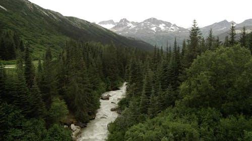 Blick auf einen Fluss fließt durch den Wald in Alaska