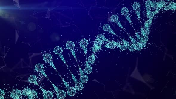 Thumbnail for DNA Plexus