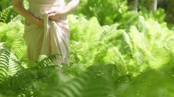 Thumbnail for Beautiful Woman Walking Between Ferns in Forest