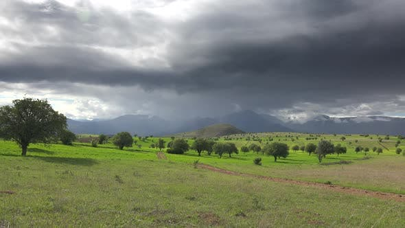 Thumbnail for Small Fields With Trees and Cloudy Mountains in Moorland