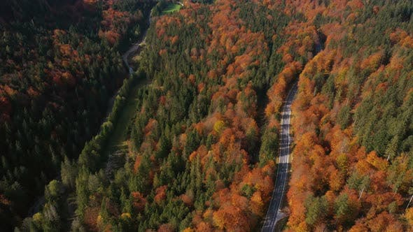 Flying Over The Empty Autumn Road 6