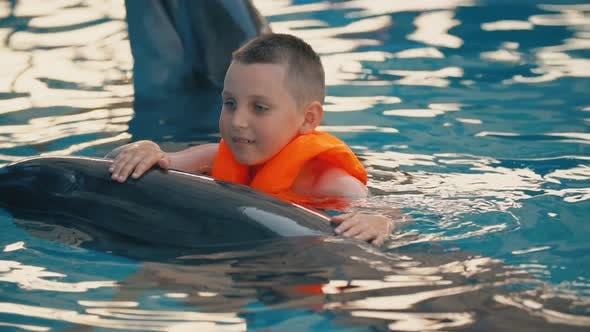 Thumbnail for Boy Swimming in a Pool with a Dolphin
