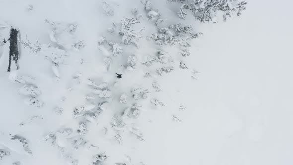 Thumbnail for Snowboard Shot Riding Downhill Slope Between Trees Aerial Drone Top Down Angle
