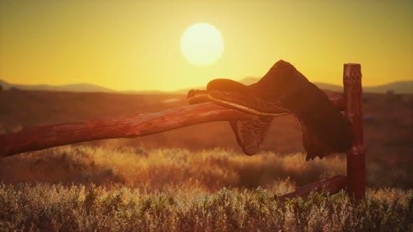 Alter Sattel wie der Sonnenuntergang im Land