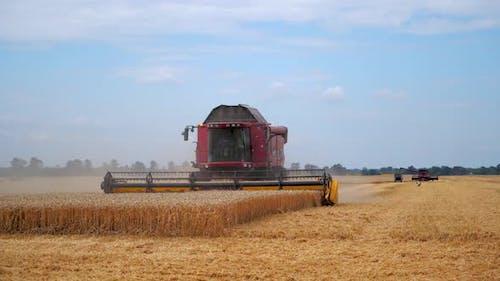 Der Landwirtschaftsprozess auf dem Gebiet. Weizenfeld und Rot kombinieren. Ernte-Prozess.