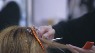 Young Female Hairstylist Trimming Customer Hair