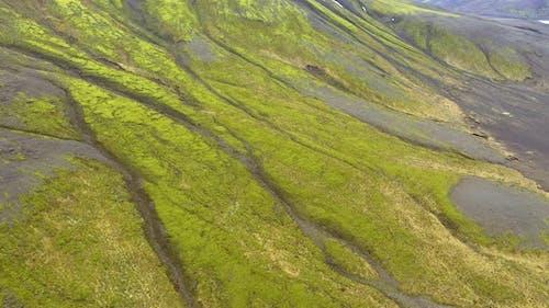 Luftaufnahme eines Vulkanplateaus, Lavastrom, Grünes Moos in Island