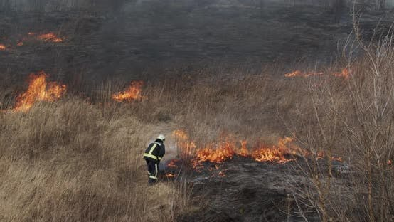 Thumbnail for Firefighter Shovels Extinguish Fire In The Field