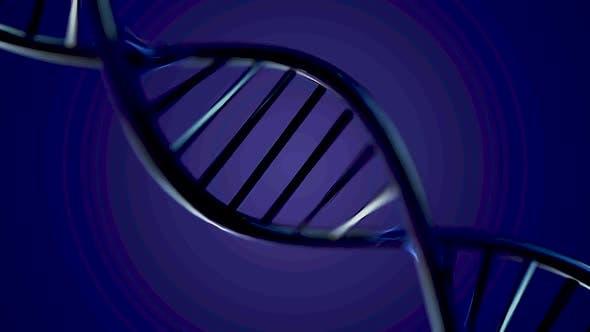 Thumbnail for DNA molecules