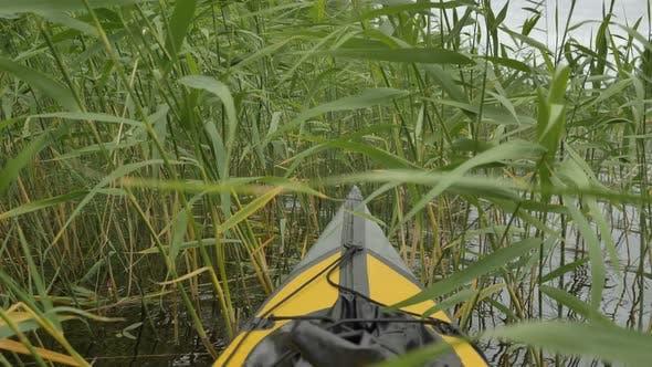 Small Kayak Sailing Through Green Reeds Along Tranquil Lake