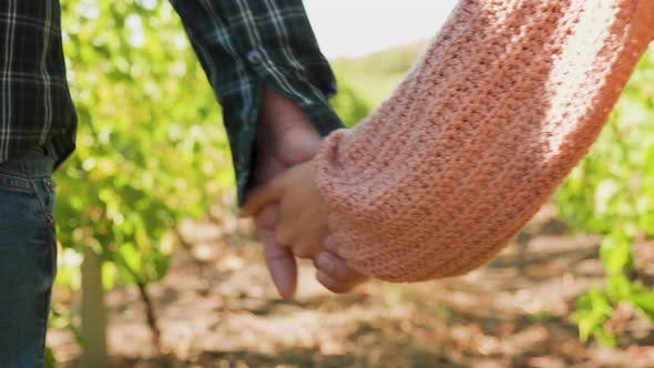 Thumbnail for Close Up Shot of Couple Holding Hands in a Vineyard