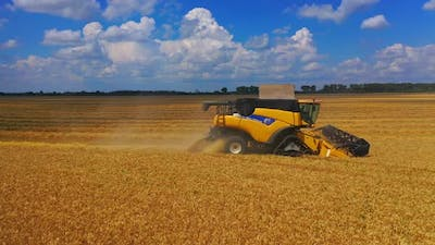 Yellow bulldozer harvesting in field. Aerial drone shot of yellow combine harvesting crop