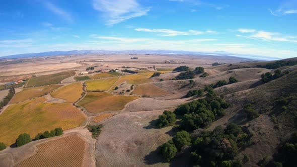Thumbnail for Sonoma County Vineyards Aerial View California