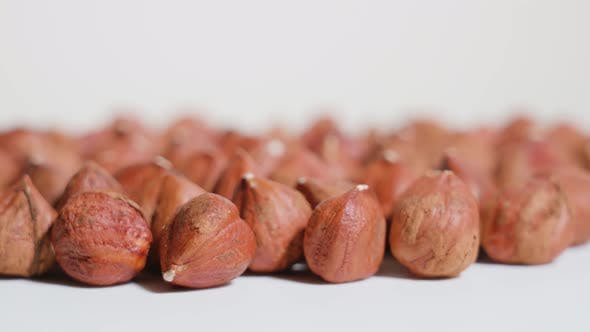 Brown Hazelnuts Rotate on a White Background