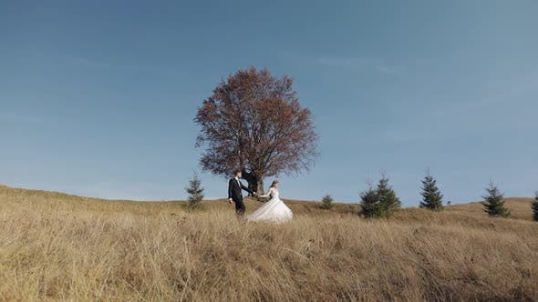 Cover Image for Newlyweds. Caucasian Groom with Bride Walking on Mountain Slope. Wedding Couple