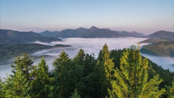 Thumbnail for Sunrise Foggy Morning over Forest and Mountains
