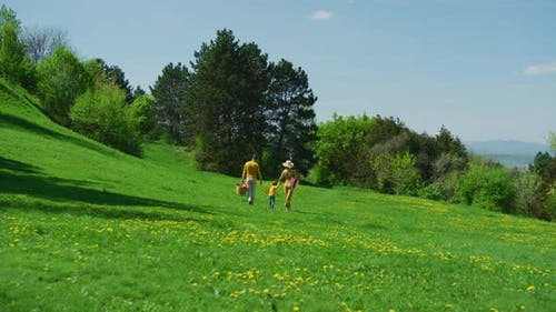 Family going on a meadow picnic