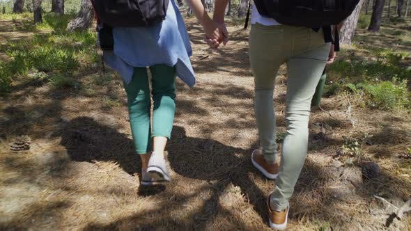 Thumbnail for Couple Holding Hand and Walking in Forest