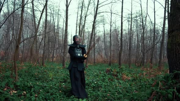 Thumbnail for Concentrated Man with a Japanese Sword, a Katana Practicing Iaido in a Pine Forest. Wide Angle. Back