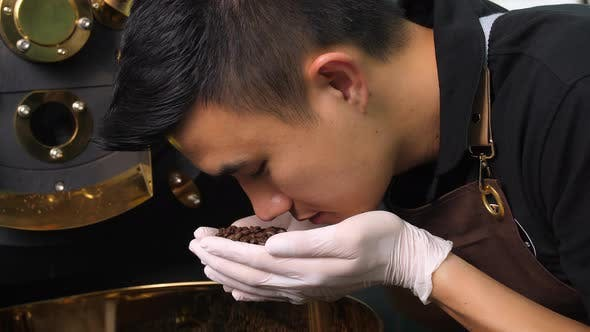 Asian Man Smelling Freshly Roasted Coffee Beans From Roaster Machine