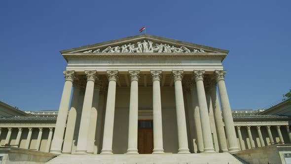 Cover Image for The Museum of Fine Arts