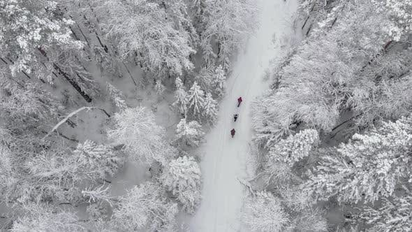 Filming From a Drone of People Walking Along a Snowy Trail