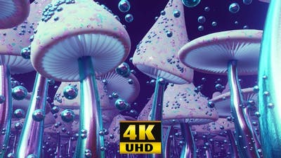 Mushroom Country 4K