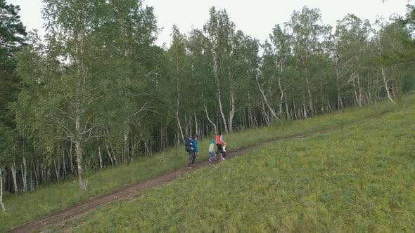 Thumbnail for Young Parents with Children Hiking on a Forest Trail in the Mountains