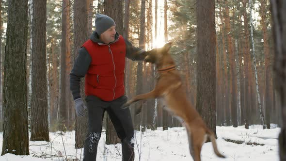 Thumbnail for Man and Dog Playing on Winter Walk