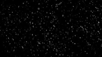 Real Snow It Is Snowing