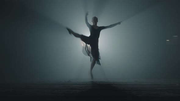 Thumbnail for Diligent Young Graceful Ballerina Dancing Elements of Classical Ballet in the Dark with Light