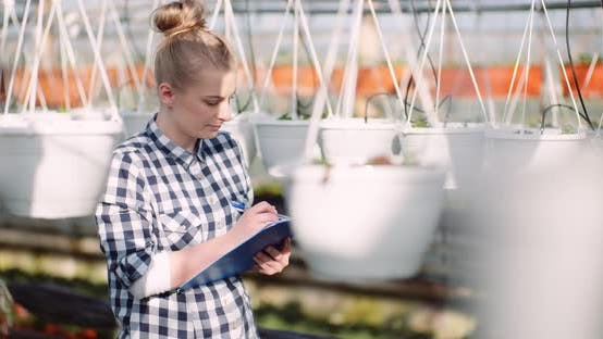 Thumbnail for Agriculture Business - Smiling Gardener Working with Flowers in Greenhouse