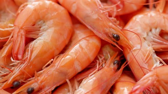 Thumbnail for Cooked shrimp on dish